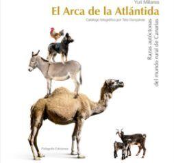 EL ARCA DE LA ATLÁNTIDA