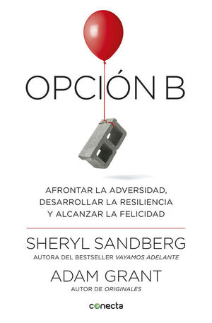 OPCIÓN B